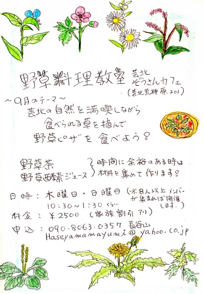 Haseyama_flyer